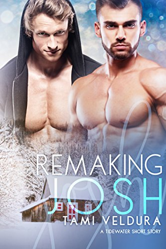 Remaking Josh by Tami Veldura