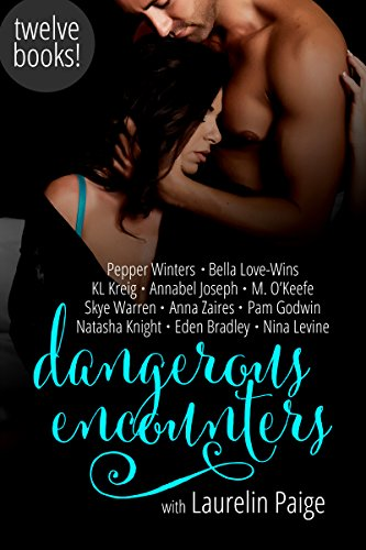 Dangerous Encounters: Twelve Book Boxed Set by Various Authors