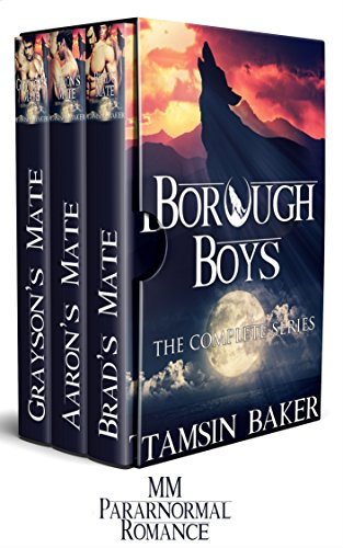The Borough Boys box-set: The complete collection by Tamsin Baker