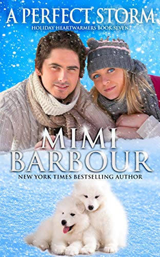 A Perfect Storm by Mimi Barbour